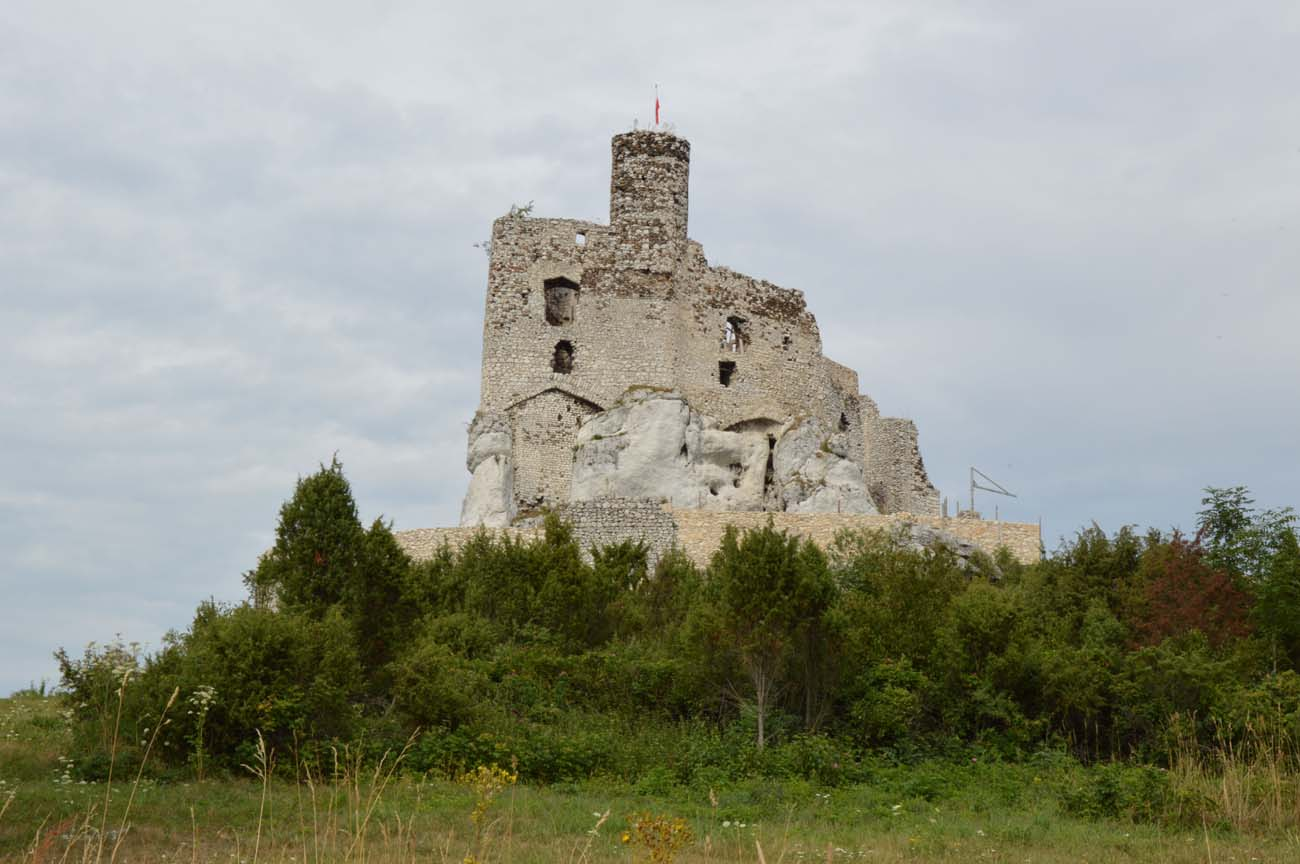 Castle From The South Photo JMichalew