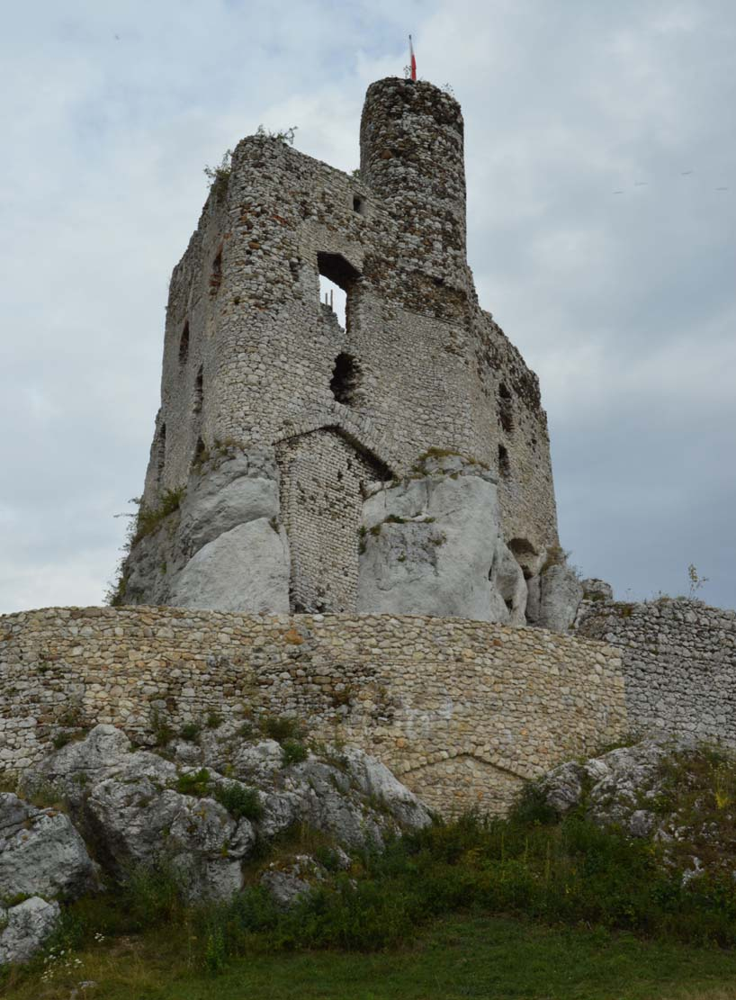 Castle From The West Photo By JMichalew